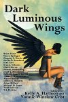 dark-luminous-wings